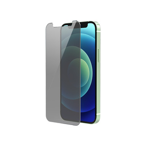 iPhone 12 mini 2.6D Flat Horn type Anti Privacy Glass