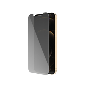 iPhone 12 pro 2.6D Flat Horn type Anti Privacy Glass